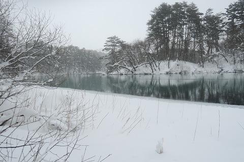 20170126五色沼 (120)