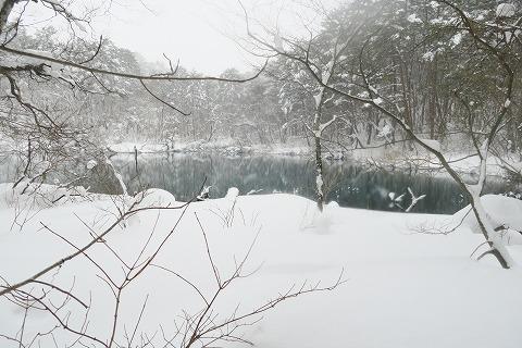 20170126五色沼 (78)