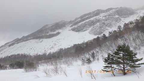 RIMG0365